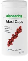 MAXI CAPS